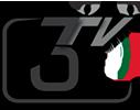 Лого 3tivi